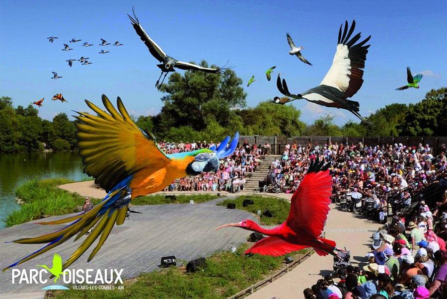 Projet Nature  parc des oiseaux