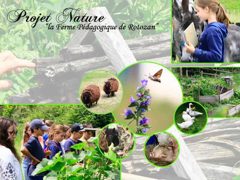 Projet Nature